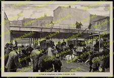 Straßenbahn Berlin Unfall Elektrotechnik Oberleitung Kutsche Pferde Polizei 1909