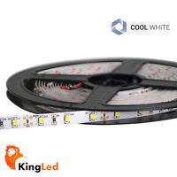 KingLed Strisce LED 12V 300SMD3528 Strip Luce Fredda 6000k 24W Raw IP20 5m 0569
