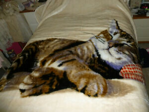 Beautiful thick cat throw/blanket