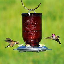 Perky-Pet 786 Red Mason Jar Glass Hummingbird Feeder , New, Free Shipping