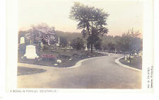 Staten Island Moravian Cemetary, New Dorp, Real Photo Pc, Nyc