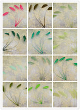 """5/7"""" Stripped Coque Feather 69 Colours Millinery & Craft Fascinators Hat Feather"""