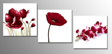 Red Floral Set of 3 Canvas Art Pictures Wall Art 3 x (52 x 52cm) ready to hang
