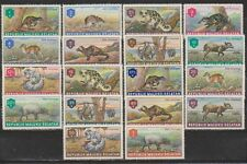 Indonesia Republik Maluku Selatan 01 - 18 Mammals Zoogdieren MLH 1953 RMS