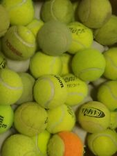 200 or 400 used tennis balls - LOW COST DOT DOGGIE BALLS with bounce, FREE SHIP