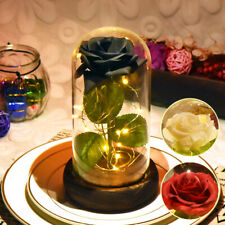 WR Glass Dome LED Black Romantic Rose Flower Valentine's Mother's Day Gifts