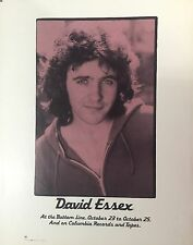 David Essex Bottom Line Columbia Records Vintage Original Promo Poster 1975