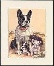FRENCH BULLDOG AND PUPPIES CHARMING DOG PRINT MOUNTED READY TO FRAME