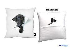 Unbranded Dog Modern Decorative Cushions