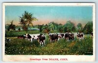 Vintage Postcard  Greetings From Noank Connecticut CT Cows In Field Scenic Farm