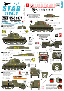 Star Decals 1/35 Polish Tanks  Italy 1943-45 2nd Armoured Brig. decal 35C1077 x