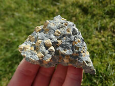 Narsarsukite ~ Kola Peninsula, Russia ~ LARGE ROUGH PIECE ! ~ RARE ! ~2