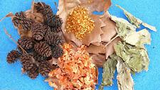 Shrimp Food: Carrots Flower Pollen oak Leaves Echinacea Alder Cones