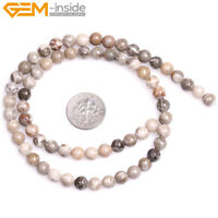 """New Round Natural Gray Fossil Coral Jasper Loose Beads Jewelry Making Strand 15"""""""