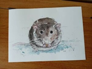 A3 pet rat rodent small animal art painting watercolour poster print unframed