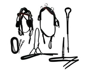 Miniature Horse Driving Harness - Leather - Black - Red OR White Trim