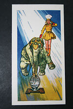 Circus Elephant  Balancing Act   Illustrated Card  ##   VGC / EXC