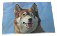 Red Husky Dog Extra Large Toughened Glass Cutting, Chopping Board, AD-H68GCBL