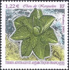 FSAT/TAAF 2002 Plant/Nature/Kerguelen Cabbage 1v n28612