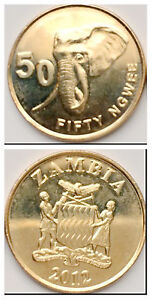Zambia 50 Ngwee 2012-2013 Elephant 21mm Brass plated Steel Coin UNC 50pcs