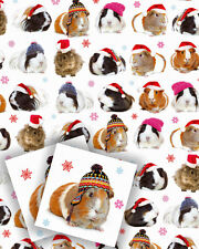 Guinea Pig Christmas Gift Wrap 2 Sheets & 2 Tags Guinea Pigs in Hats Xmas Paper
