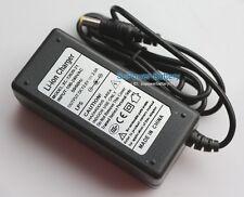 Lithium Ion Battery Charger Li-ion LiPo 3S 11.1V 12.6V 10.8V 2A Wall Socket ACDC