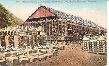 Early 1900's The Pigeon Ranch in Los Angeles, CA California PC