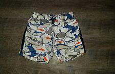 baby gap baby boys swim trunks shorts sz 6 12 months EUC shark print Gap Surf