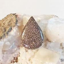 Dinosaur Gembone, cabochon, gemstone, mineral,rock,semi-precious,dino bone,#C-12