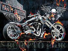 DIY 5D Diamond Painting Full drill Skull Motorcycle Fashion Wall Decor 576Y