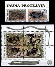 WWF Schlangen. 6W(1). Moldawien 1993