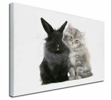"Cute Kitten with Rabbit 30""x20"" Wall Art Canvas, Extra Large Pictu, AC-161-C3020"