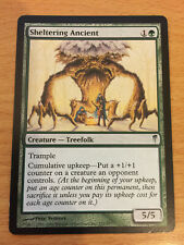 MTG 1x Sheltering Ancient Creature Forest Coldsnap Set Magic the Gathering Card