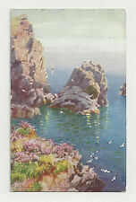 "1908 POSTCARD BY H. B. WIMBUSH - SEA DRIFT, RAPHAEL TUCK ""CORNISH CLIFFS"" SERIES"