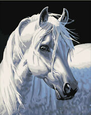 """Frame Art Paint By Number kit 16""""x20"""" White Horse in Black Back On Canvas 157"""