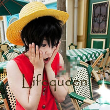 One Piece Monkey D. Luffy Anime Short Black Cosplay Hair Wig+Gift