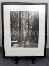 Ansel Adams Redwoods, Founders Groove 1966 Fiat Lux Collection Framed Print CMoP