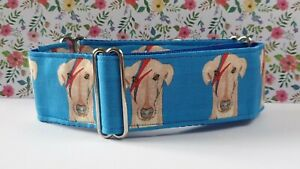 ziggy stardog on blue by Jane Wren. 40mm full Martingale Collar. Greyhounds