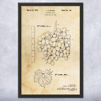Framed Seedless Grapes Print Grape Vine Art Winemaker Gift Botanical Art