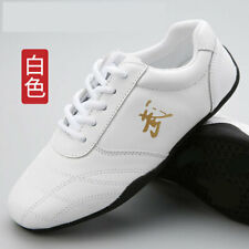 Men Tai Chi Kung Fu Shoes Tae kwon Do Tkd Sneakers Martial Arts Footwear Leather