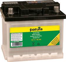 PATURA batteria Standard per 12 Volt Akkugeraete 45 AH