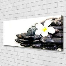 Leinwand-Bilder Wandbild Canvas Kunstdruck 125x50 Blume Steine Kunst