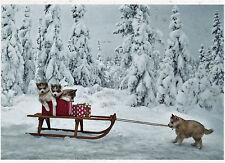 Ansichtskarte: Husky - Welpen und Weihnachtsschlitten im Winterwald