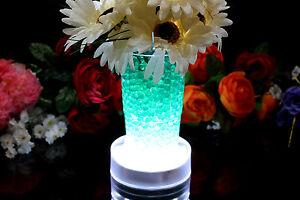 White 15 LED Bright Vase Base Light for Event Centrepiece Decoration by PK Green