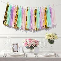 20XTissue Tassels Paper Garland Bunting Wedding Birthday Party Balloon DIY Decor