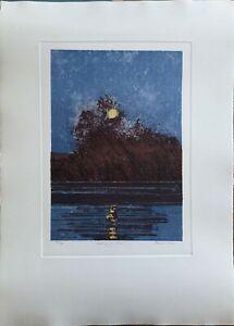 Daniel Lang incisione Night on the River 70x50 firmata numerata 54/60