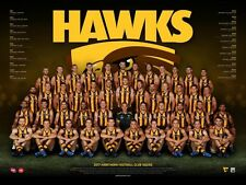 """AFL HAWTHORN HAWKS 2017 laminated TEAM POSTER """"OFFICIAL & LICENSED"""" BRAND NEW"""