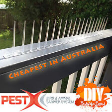 Bird Spikes 60cm Pest-X Clear Polycarbonate Animal & Bird Deterrent Pest Control