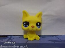 Littlest Pet Shop Yellow French Bull Dog with Blue Eyes #2602