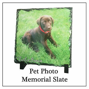 Pet Memorial Plaque, Square Photo Slate Print (not engraved) ANY PIC Dog Cat etc